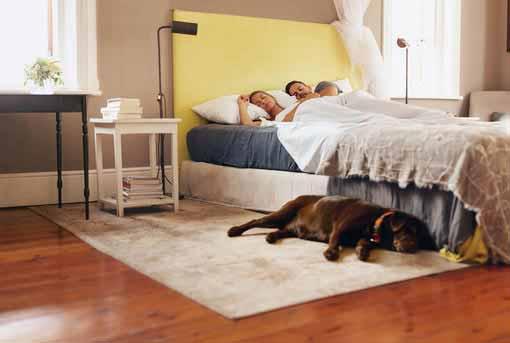 luftfeuchtigkeit im schlafzimmer - optimale luftfeuchte, Schlafzimmer ideen